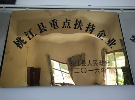 桃江县重点扶持企业